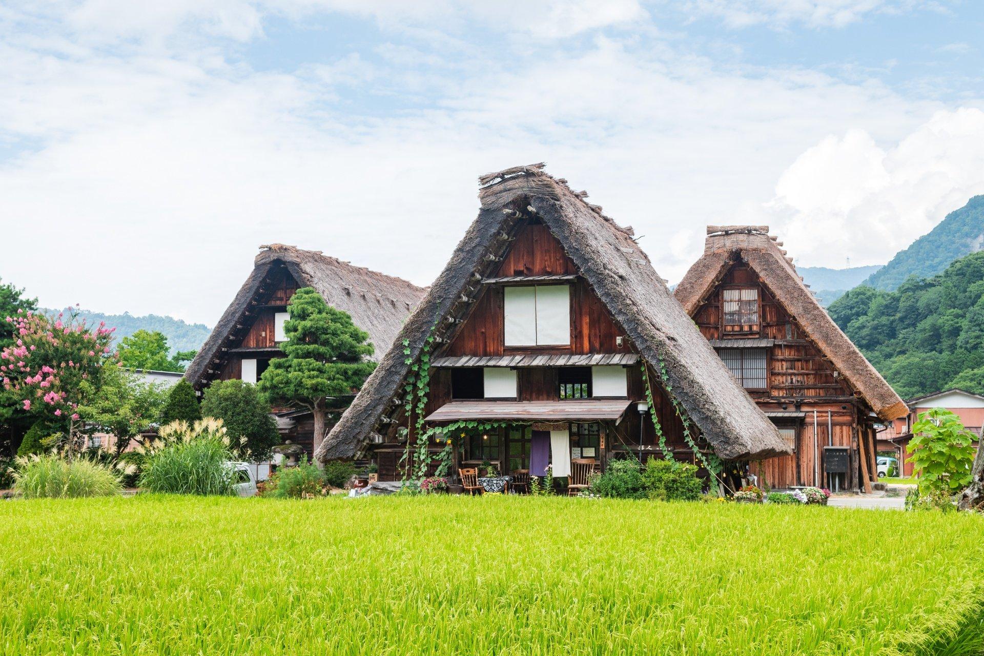 JAPÓN OKUHIDA