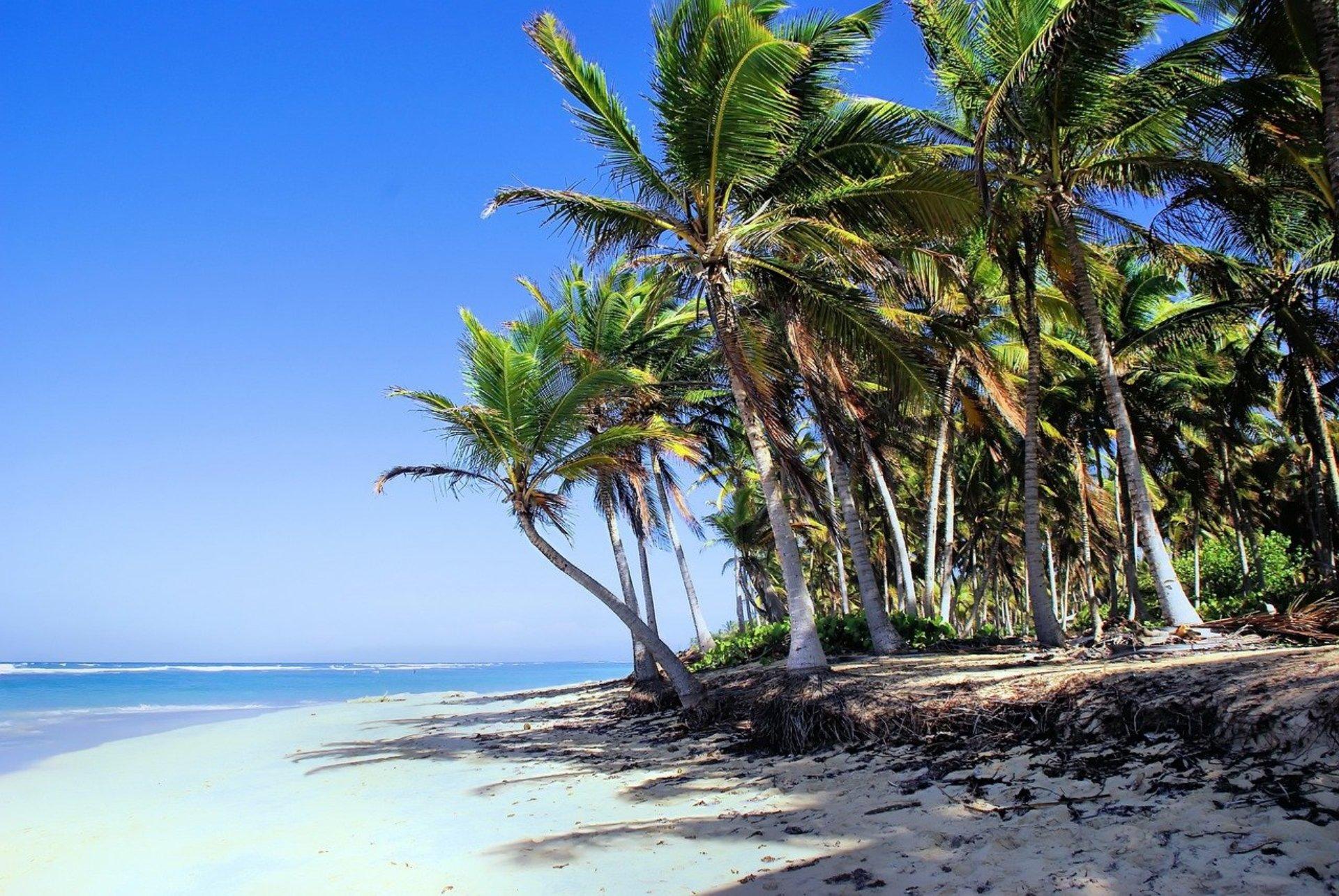 mejores-playas-de-punta-cana.jpg