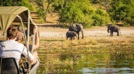 SUDÁFRICA: SAFARI Y VIÑEDOS y CATARATAS VICTORIA (lado de Zambia)