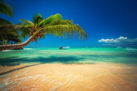 NUEVA YORK Y REP. DOMINICANA