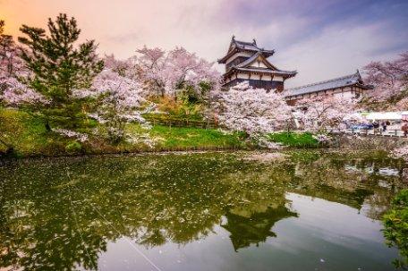 KUMANO: TRADICIONES JAPONESAS y BALI