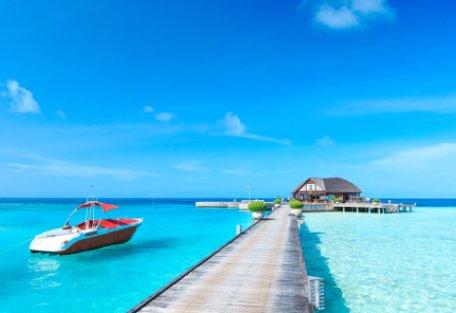 CHINA, HOGAR DEL OSO PANDA y MALDIVAS