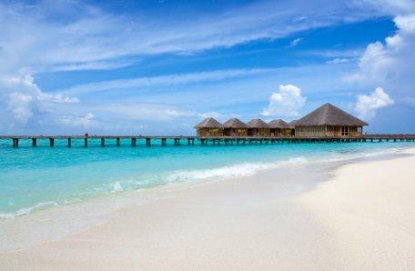 SRI LANKA FASCINANTE (Circuito en hoteles aprobados según protocolo Covid) y MALDIVAS