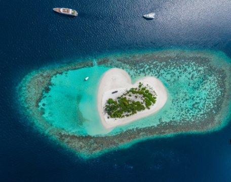 SHAOLIN y MALDIVAS II