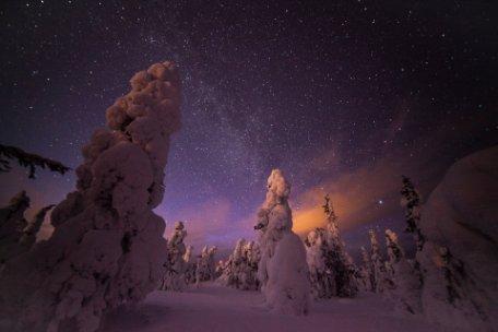 7 razones para visitar Laponia en invierno