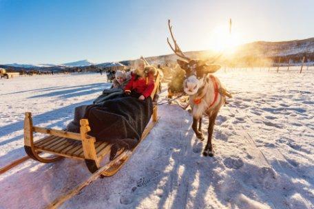 7 planes divertidos para hacer en Laponia en familia