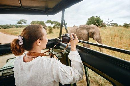 Safarisfotográficos